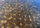 Fracking Month: Fracking And The Environment