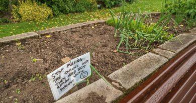 Vegetable Plot At Memorial Gardens Vandalised