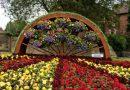 Royal Horticultural Society Judges Marvel At Belper in Bloom