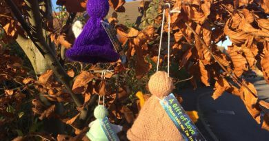 Knitted Angels Appear Around Town To Spread Christmas Cheer