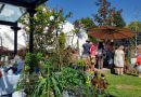 Scorching Start To Belper Arts Festival