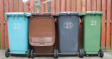 Garden Waste Collection in 2019