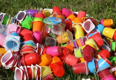Youth Voice: On Plastic in School Dinners